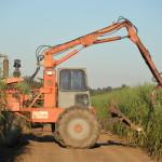 Cane loader