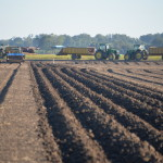 Freshly plowed ready for planting