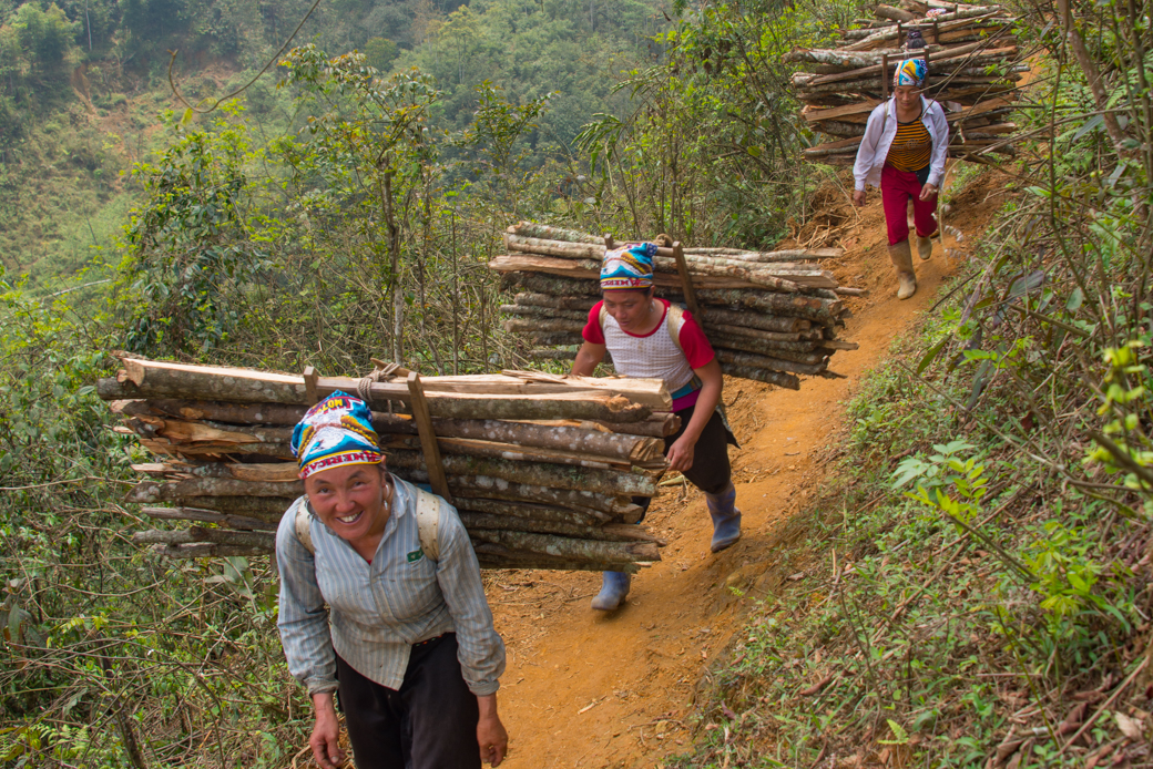 Vietnamese villagers hauling wood