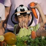 boy at elephant fruit buffet