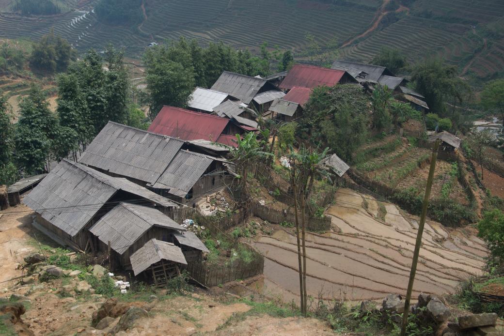 Vietnamese Farming Village