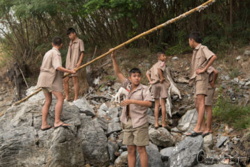 lord of the flies boys collect wood
